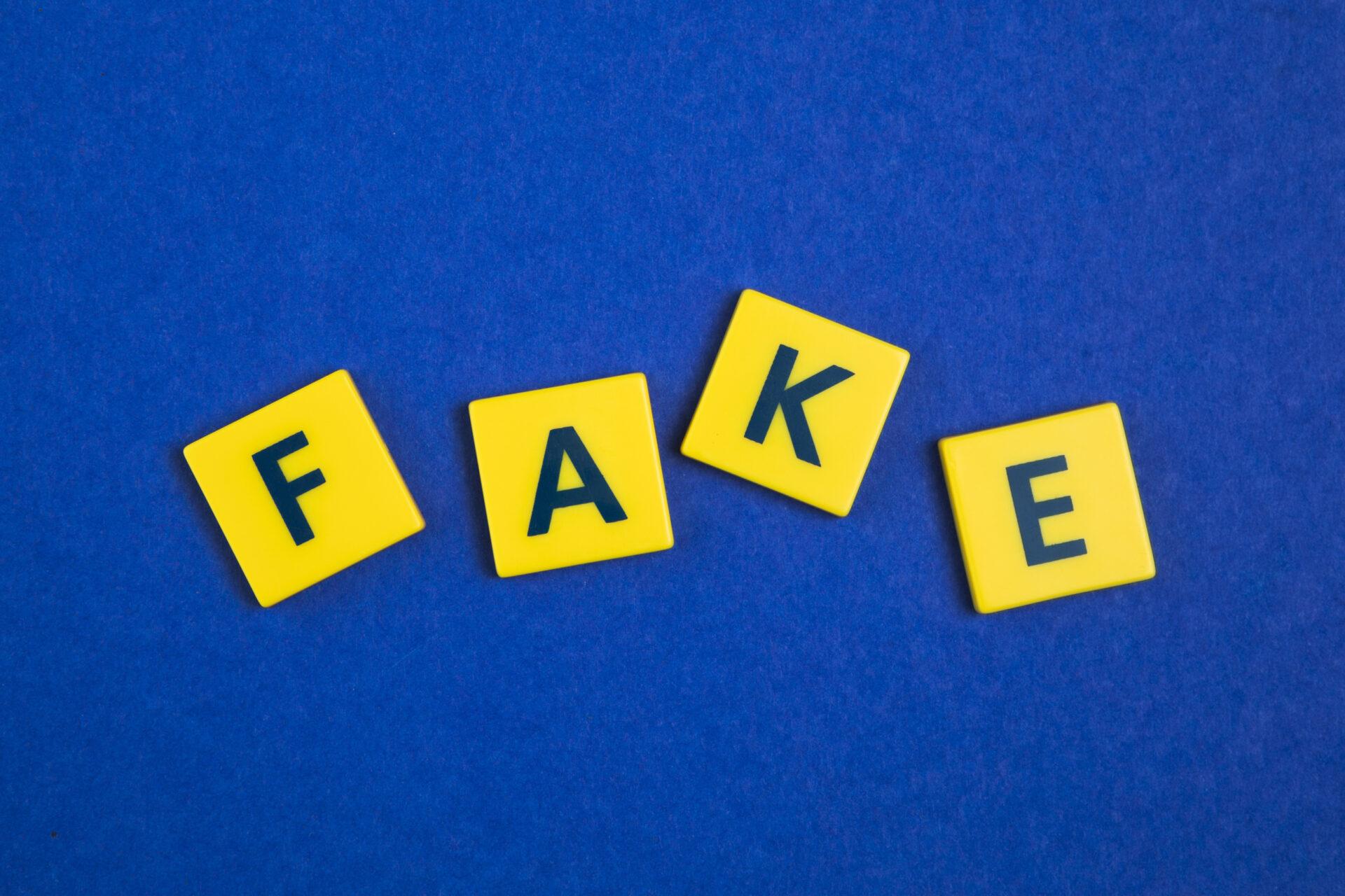 fake-chine